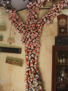 Coffee Can Tree